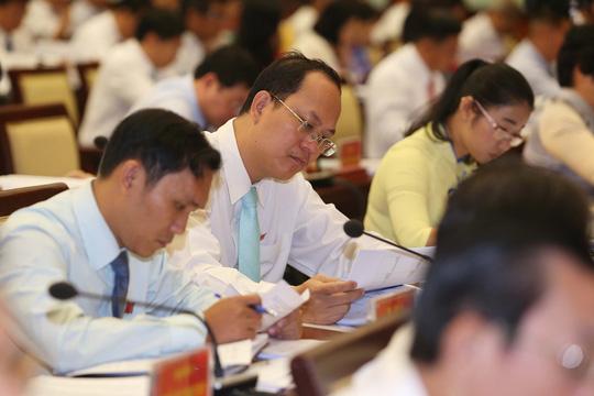 Khai mạc kỳ họp thứ 6, HĐND TP HCM khóa IX - Ảnh 3.
