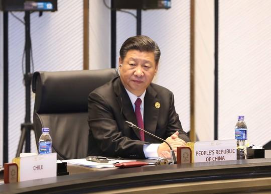 Chủ tịch nước: Thông qua Tuyên bố Đà Nẵng tại APEC 2017 - Ảnh 10.
