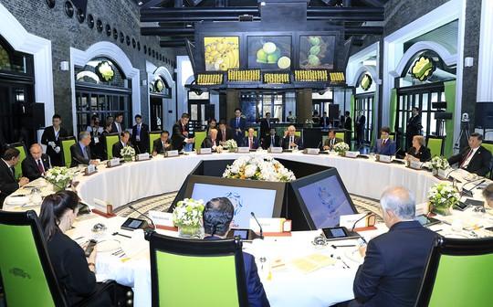 Chủ tịch nước: Thông qua Tuyên bố Đà Nẵng tại APEC 2017 - Ảnh 9.