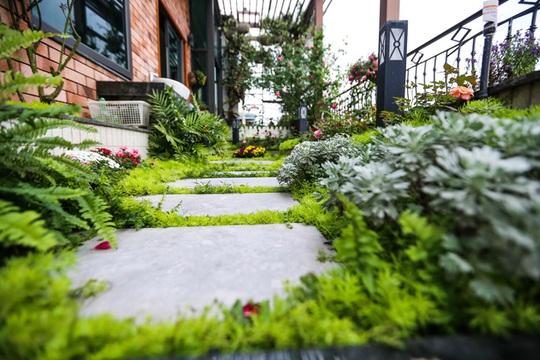 Nét thơ mộng của khu vườn trên ban công.