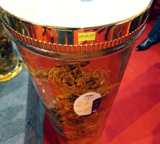 Bán được củ sâm giá 120 triệu đồng tại lễ hội sâm Ngọc Linh - Ảnh 9.