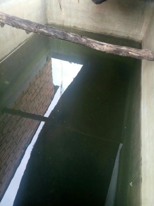 Rùng mình nghi án đổ thuốc độc vào bể nước ở Đắk Nông - Ảnh 1.