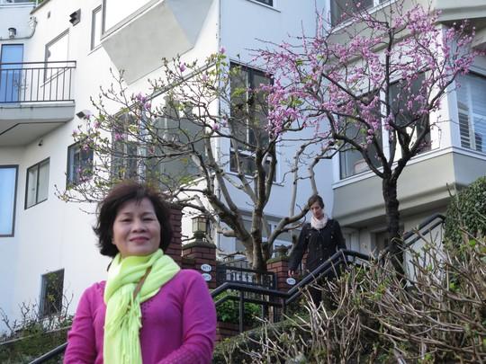 Hoa đào trở thành chủ lực cho những pô ảnh ở đường hoa Lombard. Ảnh: P.Nhi