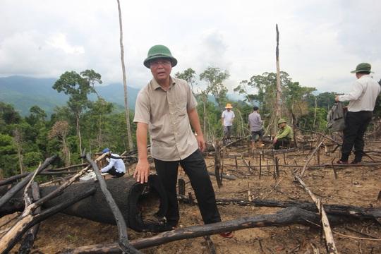 Phó chủ tịch tỉnh đi bộ 8 giờ kiểm tra hiện trường phá rừng - Ảnh 2.