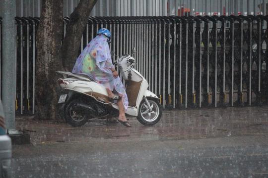 Mẹ cố gắng che chắn cho con khỏi ướt dưới cơn mưa.