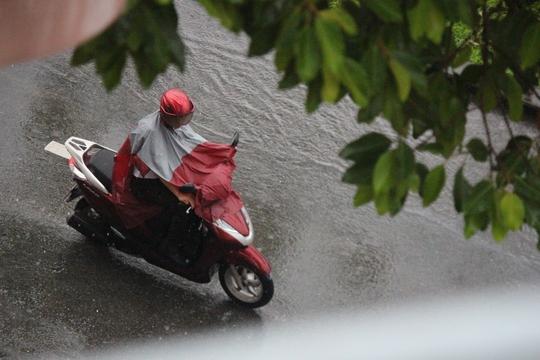 Đang mưa giông trên diện rộng tại TP HCM - Ảnh 1.
