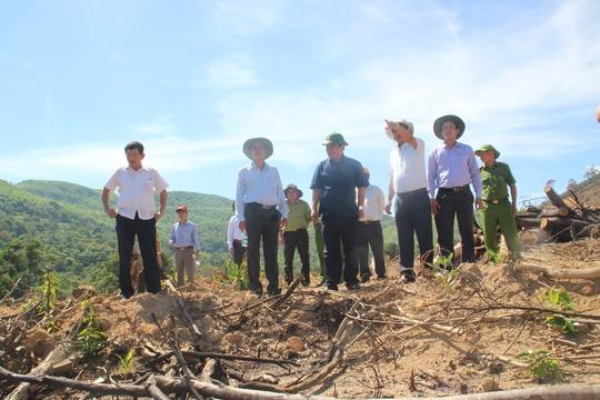 Bắt 2 đối tượng phá rừng tự nhiên ở Bình Định - Ảnh 1.