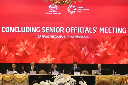 Hội nghị quan chức cấp cao mở màn tuần lễ APEC 2017 - Ảnh 1.