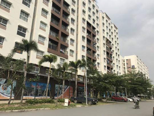 Tranh cãi gay gắt việc nuôi chó, mèo ở chung cư Sài Gòn - Ảnh 1.