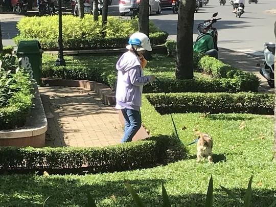 Lý giải chuyện cấm nuôi chó, mèo ở chung cư Sài Gòn - Ảnh 2.
