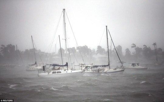 Bão Irma đổ bộ vào bang Florida - Ảnh 9.