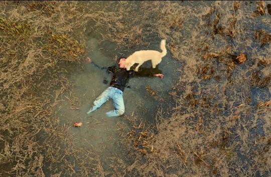 Lý Hùng trở lại với phim về nạn trộm chó - Ảnh 2.