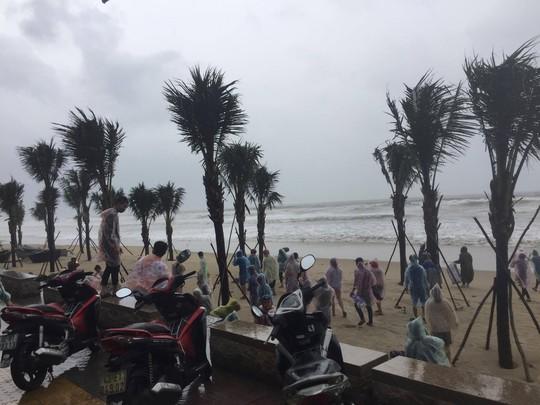 Đà Nẵng họp khẩn khắc phục thiệt hại do mưa bão trước giờ khai mạc APEC - Ảnh 3.