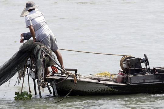 Vừa dùng lưới cào, vừa dùng xung điện thì cá, tôm nào còn?