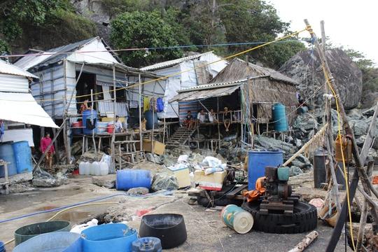 Hòn Chuối là đảo thuộc vùng biển Tây Nam của tổ quốc. Đảo thuộc thị trấn Sông Đốc, huyện Trần Văn Thời, tỉnh Cà Mau. Đảo cách cửa biển Sông Đốc 17 hải lý về phía Tây. Đảo có diện tích khoảng 7 km2 với phần lớn là rừng nguyên sinh. Trên đảo hiện có hơn 50 hộ dân với hơn 200 nhân khẩu đang sống trên những căn nhà tạm bợ, dựng tạm lên vách núi. Cuộc sống của người dân trên đảo Hòn Chuối vất vả và phụ thuộc nhiều vào thiên nhiên. Khi có gió mùa Đông Bắc, người dân dựng nhà ở về hướng ghềnh Nam. Khi gió mùa Tây Nam đến mọi đồ đạc lại được di chuyển về phía ghềnh Đông.