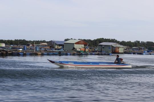 Cuộc sống của ngư dân nơi vẫn tách biệt với sự ồn ào, náo nhiệt của phố thị. Tới đây, du khách thoải mái lựa chọn hải sản tươi sống mang về mà không lo chặt chém.