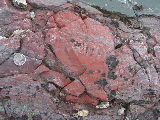 Thành tạo đá nơi hóa thạch được tìm thấy. Ảnh: DOMINIC PAPINEAU