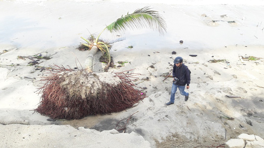 Chùm ảnh: Bờ biển Cửa Đại tan hoang hơn 2 km - Ảnh 7.