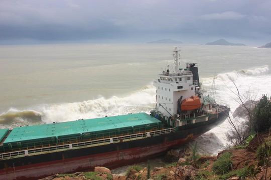 Bình Định yêu cầu khẩn trương trục vớt 9 tàu hàng bị chìm - Ảnh 2.
