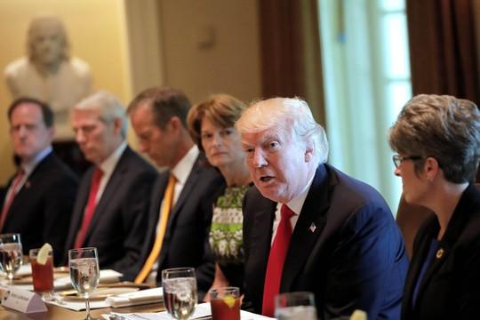Đảng Cộng hòa cản bước ông Donald Trump - Ảnh 1.