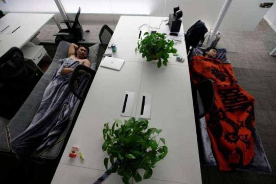 """Các chuyên gia việc làm cho rằng nghề """"ngủ thử"""" sẽ khởi sắc trong vài thập kỉ tới ở Trung Quốc. Ảnh: REUTERS"""