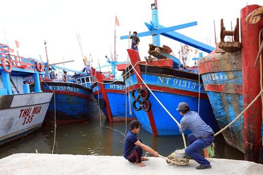 Ninh Thuận – Bình Thuận khẩn trương ứng phó với bão số 14 - Ảnh 1.