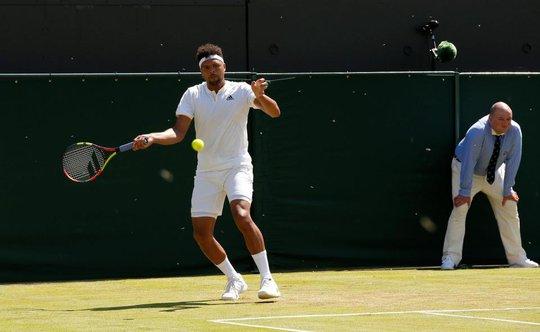 Wimbledon khổ vì kiến cánh - Ảnh 5.