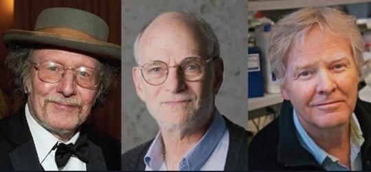 Giải Nobel Y học về tay 3 nhà khoa học người Mỹ - Ảnh 1.