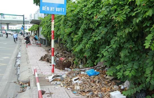 Ra khỏi sân bay Tân Sơn Nhất là ngập rác! - Ảnh 3.