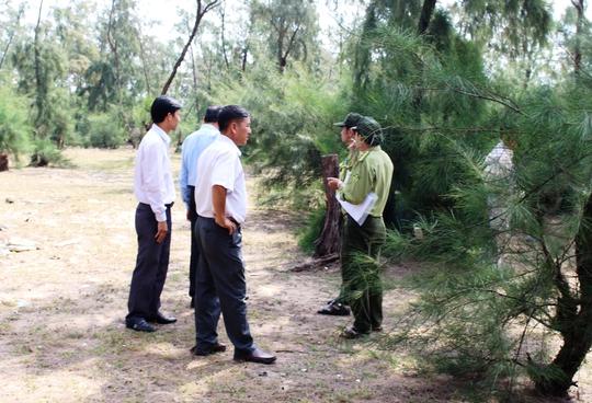 Huyện Đông Hòa thành lập đoàn kiểm tra ngay khi xem clip phá rừng do chính người dân đưa lên mạng xã hội