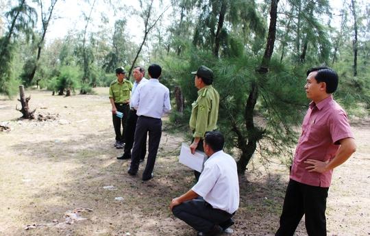 Ông Toàn (đầu tiên bên phải) dẫn đoàn kiểm tra hiện trường vụ phá rừng