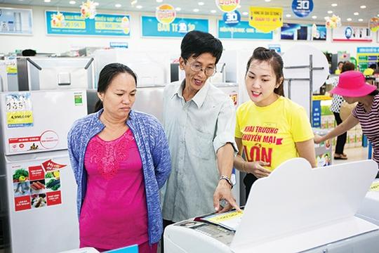 Công ty Thế giới Di động (MWG) cho biết đã lên kế hoạch sẽ mở rộng hệ thống bán lẻ Điện máy Xanh trong năm 2017 lên tới 400 siêu thị và shop.