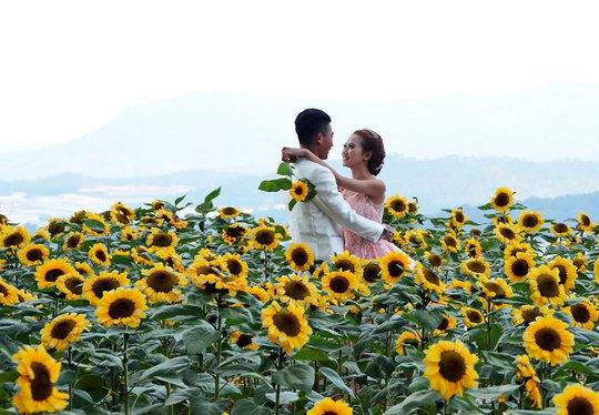 Chụp ảnh cưới giá vào vườn sẽ cao hơn