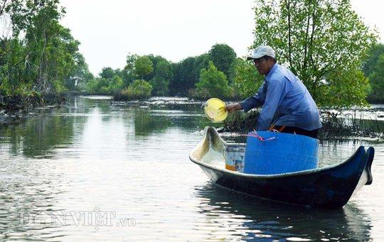 Từ tờ mờ sáng, nông dân đã rải thuốc cá để kịp đem cá ra chợ bán vào buổi sáng