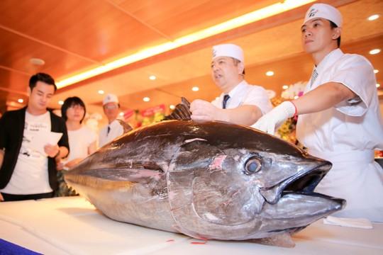 Cá ngừ vây xanh 300 triệu nhập từ chợ cá Nhật Bản - Ảnh 2.