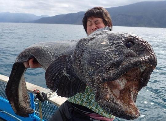 8 sinh vật kỳ dị dưới đáy đại dương - Ảnh 1.