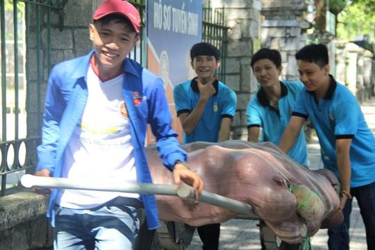 """Huế chung tay """"giải cứu bí đỏ"""" cho nông dân Đắk Lắk - Ảnh 2."""