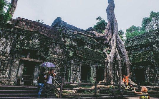 Ta Prohm - ngôi đền của những rễ cây kỳ dị - Ảnh 1.