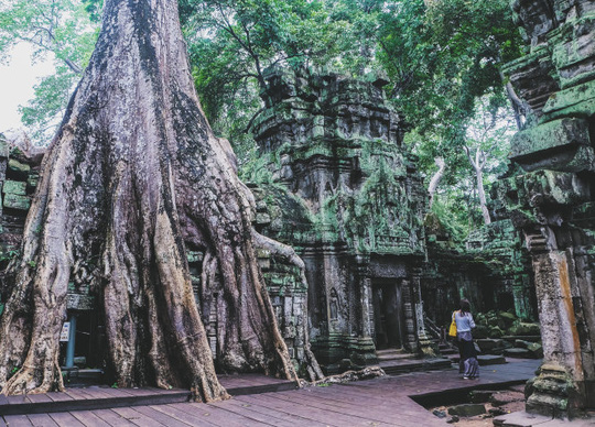 Ta Prohm - ngôi đền của những rễ cây kỳ dị - Ảnh 2.
