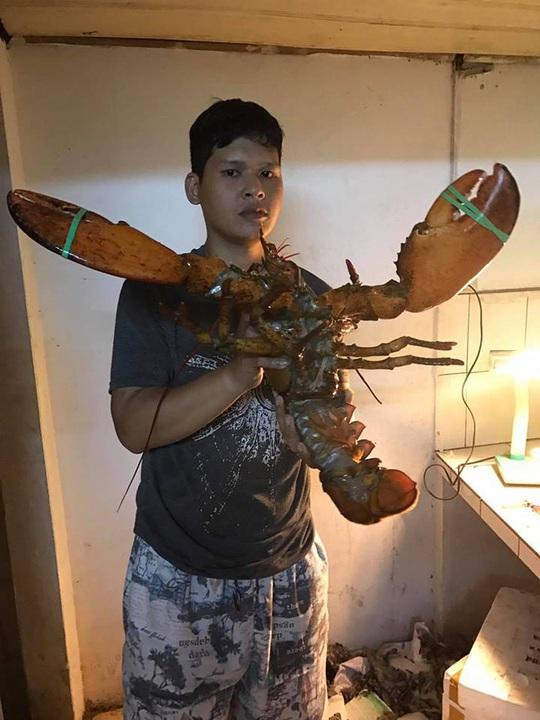 Đại gia Việt săn tôm hùm khổng lồ nặng tới 7kg tặng nhà vợ - Ảnh 2.