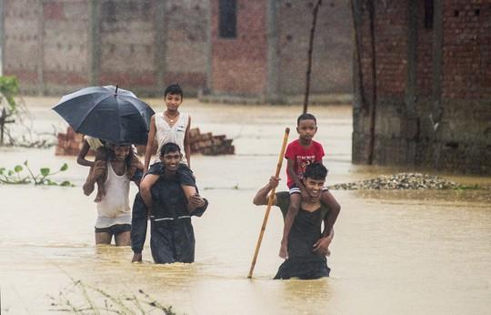 Nepal: Lũ lụt nghiêm trọng, người dân sơ tán bằng voi - Ảnh 7.