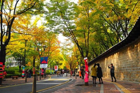 Con đường dính lời nguyền chia tay người yêu ở Hàn Quốc - Ảnh 1.
