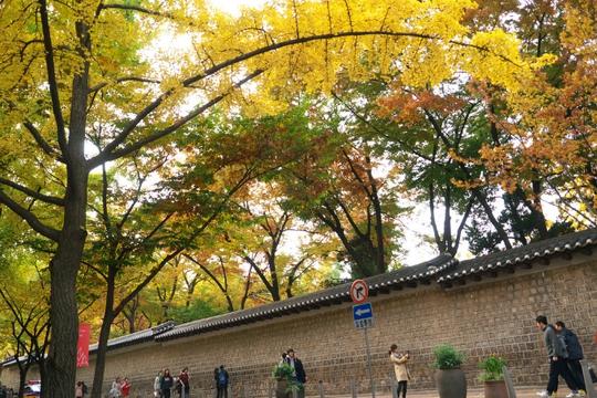 Con đường dính lời nguyền chia tay người yêu ở Hàn Quốc - Ảnh 2.