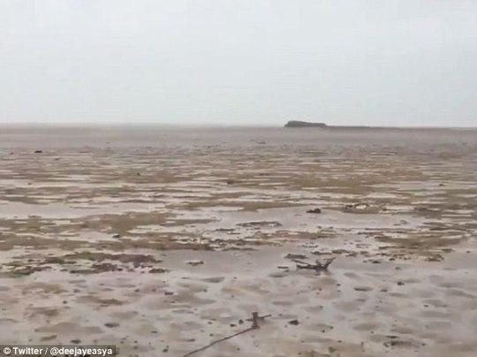 Bão Irma rút cạn nước biển, hiện tượng kỳ quái hiếm thấy - Ảnh 1.