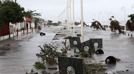 Cây cối ngã đổ trên đường sau bão. Ảnh: Reuters