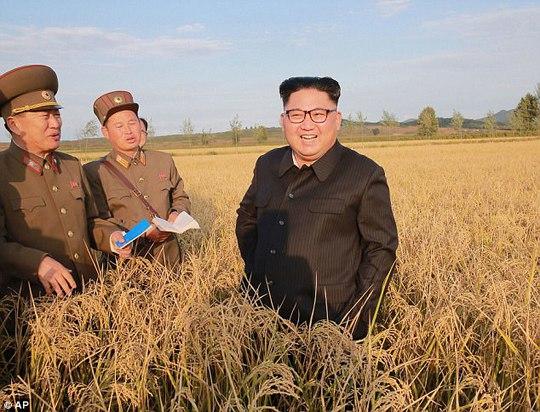 Chính quyền ông Donald Trump lần đầu thừa nhận liên lạc trực tiếp với Triều Tiên - Ảnh 3.