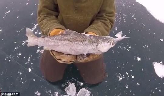 Cá lớn hóa đá khi đang nuốt cá bé - Ảnh 4.