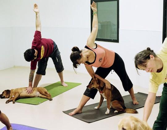 Những màn trình diễn yoga như thế này thật không tưởng - Ảnh 2.