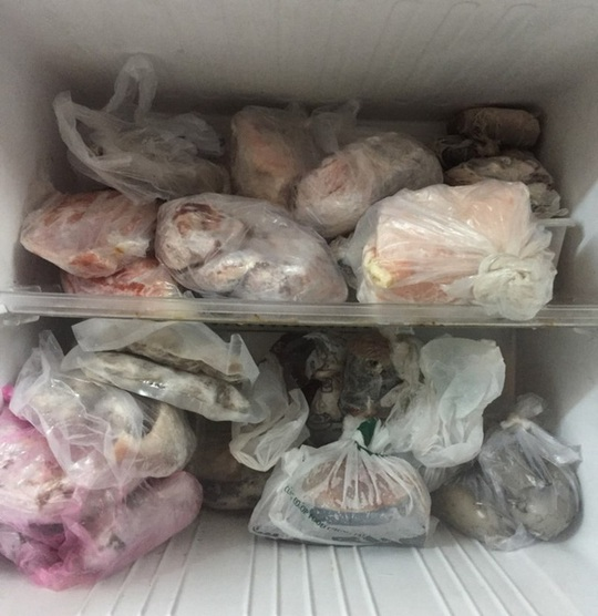 Đựng đồ ăn trong ngăn đá bằng túi nylon liệu có hại? - Ảnh 2.