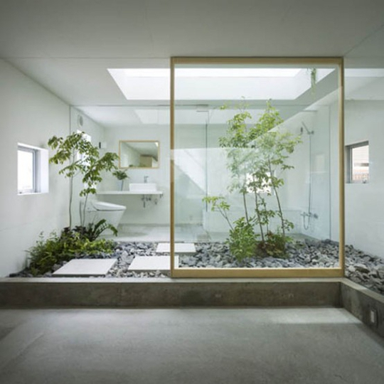 Xu hướng tạo vườn trong nhà trong thiết kế nhà ở - Ảnh 1.
